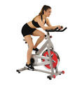 Exercise Bike Flywheel Chain Drive Pro Home Indoor Cycling Fitness Cadio Workout