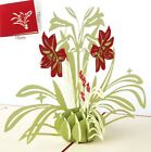 3D Pop Up Card Flower Narcissus Thanksgiving Day Card Blessing Greeting Cards