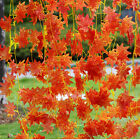 Artificial Red Autumn Maple Leaf Garland Vine For Wedding Party Home DecorBLUS