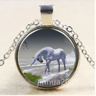 NEW Vintage Rambling Unicorn Photo Cabochon Tibet Silver Chain Pendant Necklae/