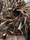 Primitive Dried Corn and Cobs FALL AUTUMN Wreath Hand Tied Early Look Homestead