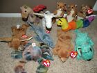 11 TY BEANIE BABY Nuts Inch Ears Claude Scorch Magic Crunch Nutty Diddley Cubbie