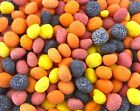 Nerds Covered Chewy  Bumpy Jelly Beans Bulk