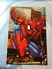 Spider-Man Trading Cards Guide and History 23