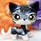 CUSTOM OOAK Toys Mini Shop Hand Painted Short Hair GALAXY Kitty Cat