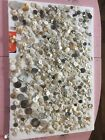 600+ Lot Antique Vintage Buttons Mother of Pearl Abalone Carved Glass Mixed
