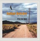 NATHAN HOLSCHER - Pray For Rain - CD - **Mint Condition**