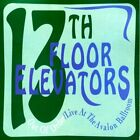 13TH FLOOR ELEVATORS - Out Of Order: Live At Avalon Ballroom - CD - Live - *VG*