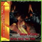 PINK FLOYD - Pink Floyd Iron Pigs On Fire May 1, 1977 Gate-fold Mini Lp 2cd NEW