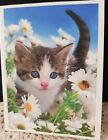KITTYS NOTE CARDS Set of 10 + Envelopes Wonders