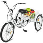 Shimano 7 Speed Adult 24 3 Wheel Tricycle Trike Bicycle Bike Cruise With Basket