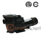 15HP 2 Speed IN GROUND Swimming POOL PUMP MOTOR Strainer above Inground 230v
