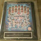 2016 Chicago Cubs World Series Champions Memorabilia Guide 14