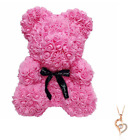 Pink Rose Flower Teddy Bear 10 + FREE I Love You Necklace  Mothe
