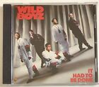 The Wild Boyz It Had To Be Done RARE Oakland 1989 Bay Area OOP RAP CD VOLT
