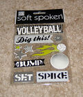 Me  My Big Ideas Soft Spoken Dimensional Embellishment Volleyball