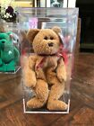 Ty Beanie Babies Collection - 1996 Curly Bear in Case - MINT