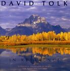 DAVID TOLK - In Reverence - CD - **Mint Condition** - RARE