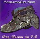 WATERMELON SLIM - Big Shoes Tofill - CD - **Mint Condition**