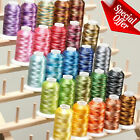 Machine Embroidery Thread Polyester 1100Yards Large Cones Lot Variegated Brother