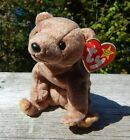 Ty Beanie PECAN Bear w/ Tag ERRORS Plush Toy RARE PE NEW RETIRED