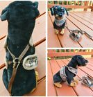 Designer pet dog harness various sizes available