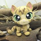 Toys Mini Pet Shop WARRIOR CAT Ooak Custom Hand Painted