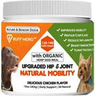 Glucosamine Chondroitin Joint Supplement for Dogs Dog Treats With MSM Turmeric