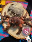 Ty Hairy 2000 Beanie Baby Spider Bdate Oct 6 2000 New Tag Protected