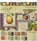 Graphic 45 Double Sided Paper Pad 8X8 24 Pkg Fruit  Flora 850013653133