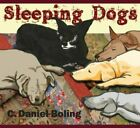 C. DANIEL BOLING - Sleeping Dogs - CD - **Mint Condition**
