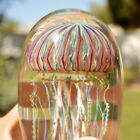 SATAVA GOLD RUBY JELLYFISH HAND CRAFTED GLASS 65 INCHES TALL SIGNED