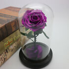 Rose Artificial Forever Flowers with Base Forever Rose Mother Best Gift