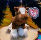 Ty Hoofer Beanie Baby Horse 2001 Tag Protected Nov 17 2001 bdate