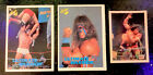 Ultimate Warrior Cards and Memorabilia Guide 12