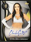 2019 Topps WWE NXT Wrestling Cards 13