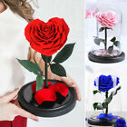 Heart Shaped Preserved Rose Beauty and The Beast Eternal Glass Dome For Wedding