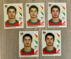 Complete Guide to Panini World Cup Sticker Albums 22