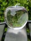 Rosenthal Crystal Clear Heavy Apple Vintage Paperweight Signed