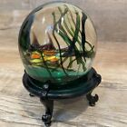 Vintage Deco Nautical Fish In Seaweed Art Glass Paperweight Possibly Murano