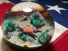 Vintage 1979 Selkirk Glass Paperweight Sea Bed Signed Peter Holmes 69 200