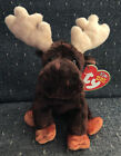 Ty Original Beanie Baby Zeus The Moose 2002 Retired Glitter Antlers
