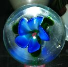 Dynasty Gallery ART Glass 4 X 3 Paperweight Heavy Clear  blue floral