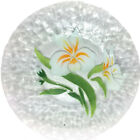 Sydenstricker Fused Glass White Yellow Floral Orchid Plate 9 7 8 Signed
