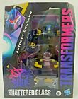 IN HAND HASBRO TRANSFORMERS SHATTERED GLASS DELUXE AUTOBOT GOLDBUG ACTION FIGURE