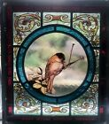 VICTORIAN Stained Glass Bird Window Panels Set of 10 RARE OPPORTUNITY