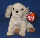 TY LAPTOP the COCKER SPANIEL BEANIE BABY - MINT with MINT TAG