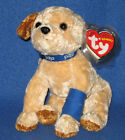 TY PADS the PDSA DOG BEANIE BABY - UK EXCLUSIVE - MINT with MINT TAG