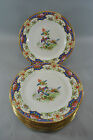 Shelley Engish Porcelain Old Sevres Pattern 648812 with Exotic Birds and Flowers