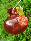HUMMINGBIRD HAND BLOWN GLASS FEEDER ONE SIP RED BY KITRAS ART GLASS CANADA